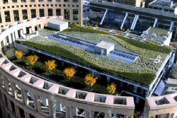 Rooftop garden, Vancouver Public Library