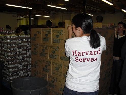 Harvard Serves