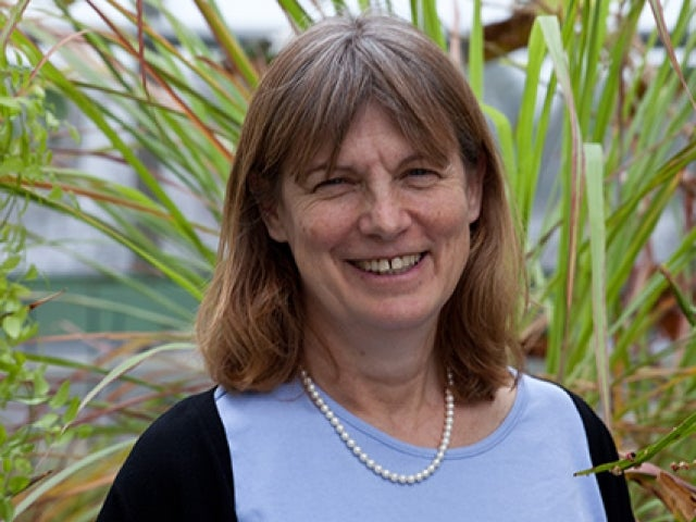 Missy Holbrook