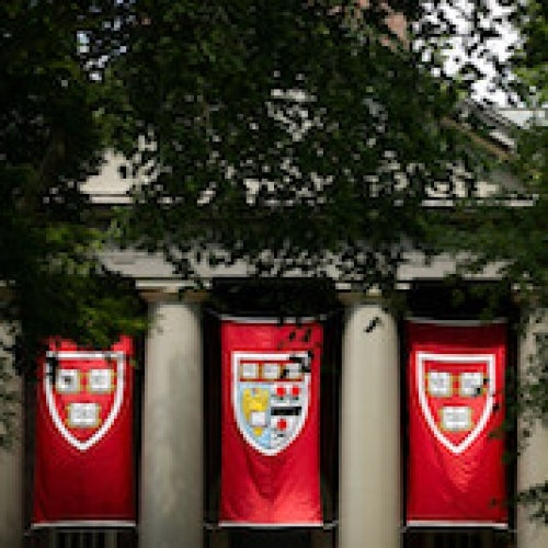 Harvard banners
