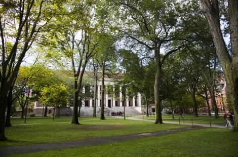Harvard campus with trees