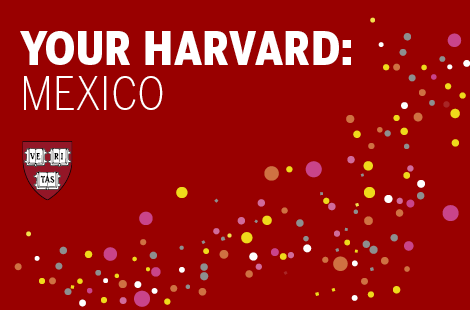 Your Harvard: Mexico